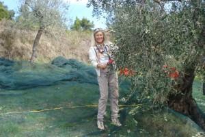 Heidi mit Handkamm bei der Olivenernte 2015