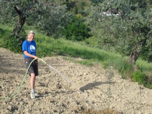 Heidi gießt Mini-Carboncella