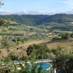 Blick von unserem Olivenhang über den Pool in die Olivenhänge unserer Nachbarn.