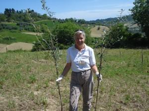 Heidi trägt zwei 2- bis 3 Jahre junge Olivenbäumchen zum Einpflanzen.