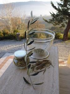 Als er noch im Glas war: unser Olivenblätter-Tee, fotografiert auf der Eingangsmauer unseres Hauses in den Marken