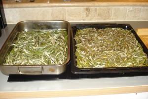Die getrockneten Olivenblätter müssen nun nur noch gehäckselt und abgepackt werden.