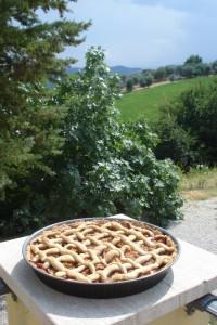 Diesen leckeren Mürbteigkuchen, Crostata genannt, habe ich mit unseren Feigen gebacken. Dahinter unser Wunder-Feigenbaum.