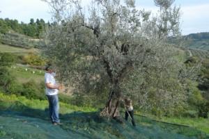Dieter und Caroline an unseren Bäumen im unteren Gelände