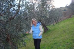 Inspektionsgang durch unseren Olivenhain: auch am 3. Januar 2016 ein grünes Vergnügen!