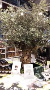 Eataly, das kulinarische Schaufenster Italiens in München, begrüßt die Besucher mit einem Olivenbaum.