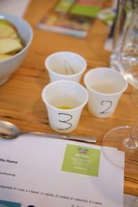 Insgesamt sechs verschiedene Olivenöle wurden getestet - mit Auswertungsbogen.